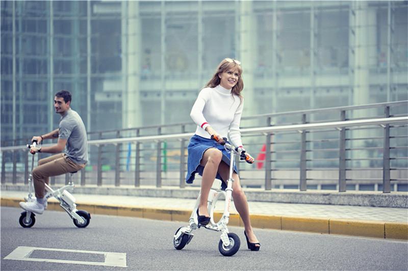 Elektro Fahrrad Faltrad